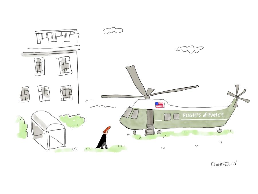 Trump flights of fancy